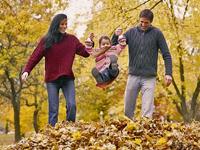 Lombhullató őszi napok
